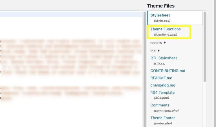 Theme Functions File