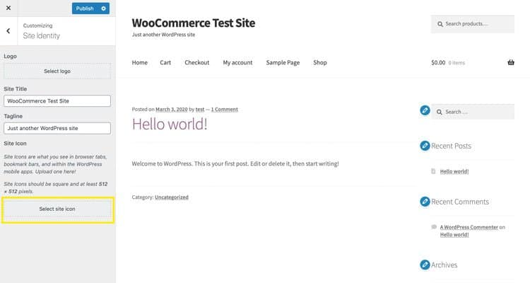 The Customizer in WordPress
